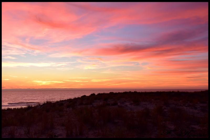 Coucher de Soleil océan Cap Ferret 374309DSC45761