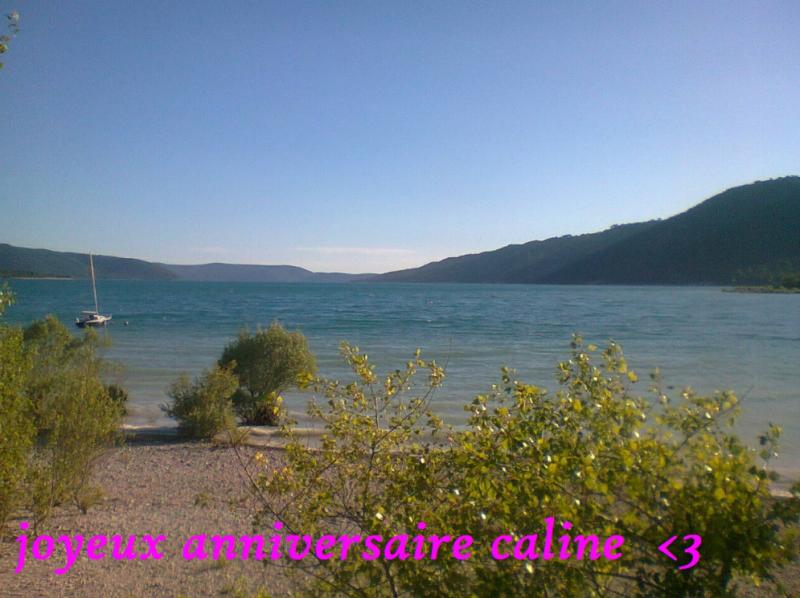 Joyeux Anniversaire Caline !  380963happy