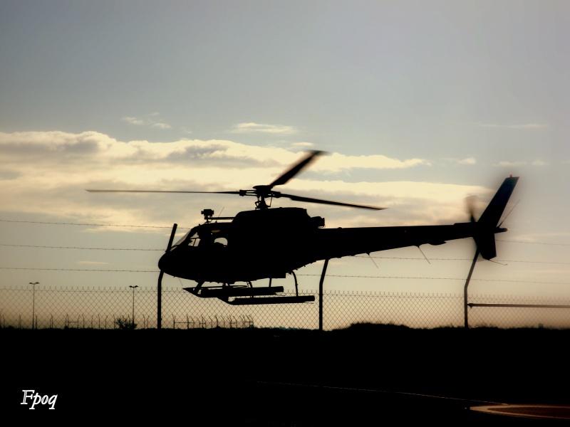 Concours Photos du moi d'Octobre:Les Hélicoptères 382381DSC04022