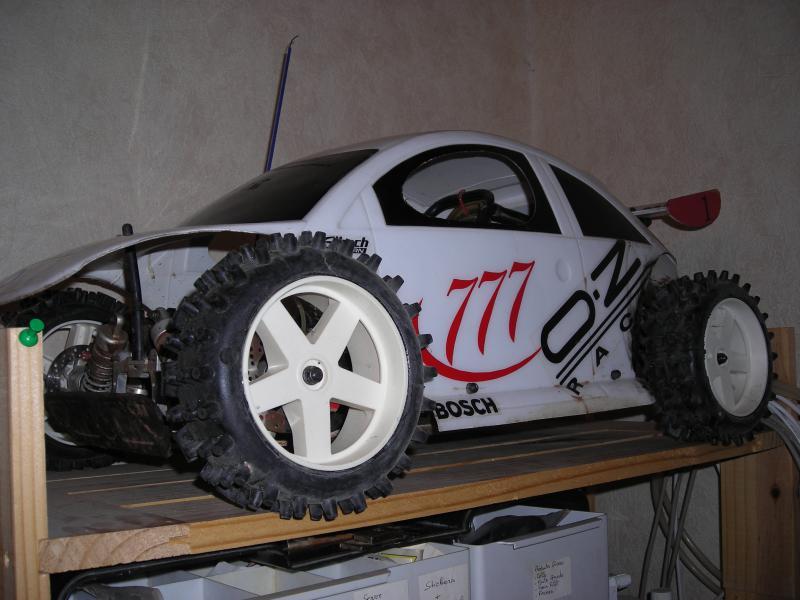 Léopard avec carrosserie de beetle ! 389940750435DSCN8914