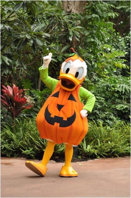 [Disney Vacation Club] Aulani, a Disney Resort & Spa (29 août 2011) - Page 9 397111w183