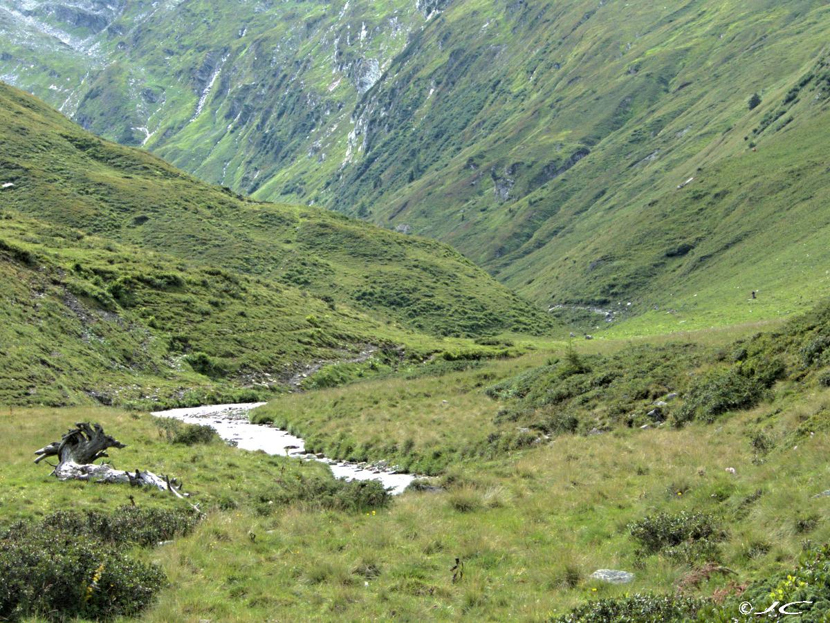 Les alpes  autrichiennes - Page 7 4020944724