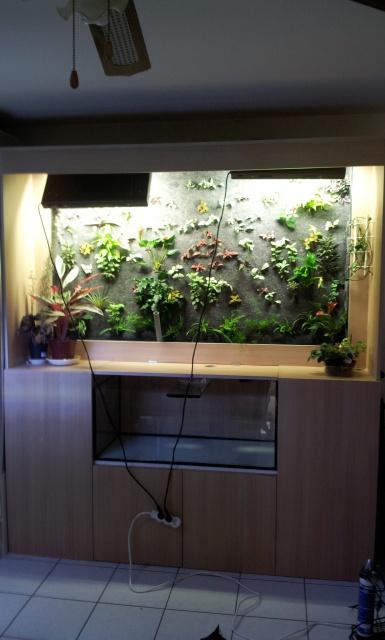 Le nouveau mur végétal de Olivetzou (projet fini à 98%) enfin les leds - Page 2 41208213