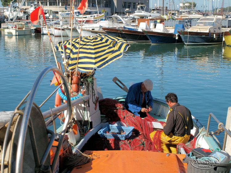 Cassis sur Mer et La Ciotat Bouches du Rhône 4158958235
