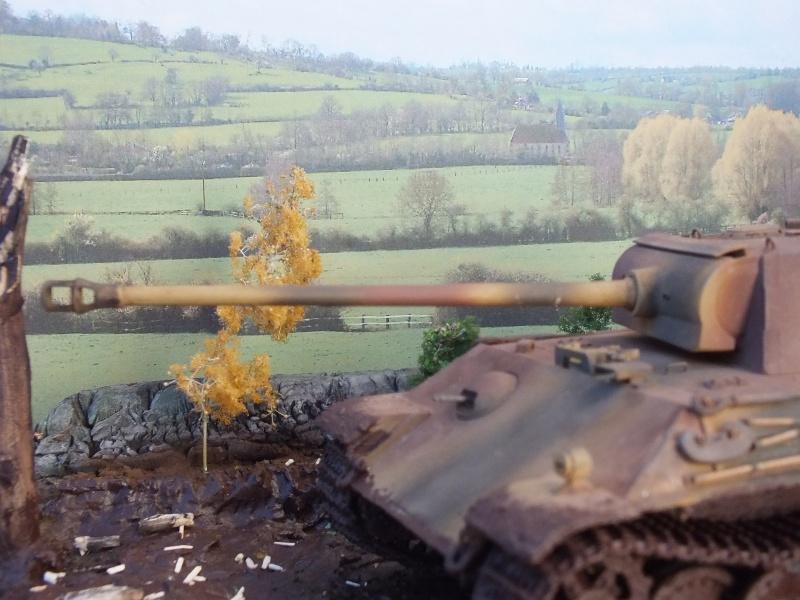 Ardennes Belges ,  mi-septembre 1944... 417000DSCF7279