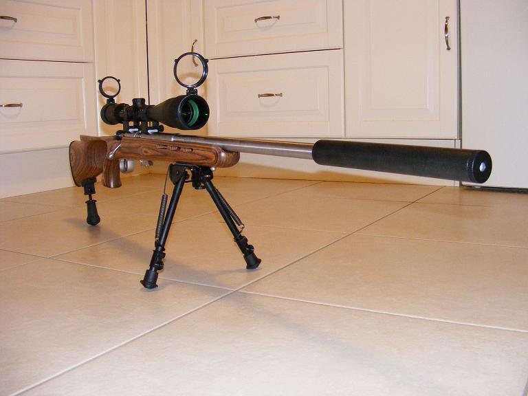 Mes armes longues : Savage Mark II BTVS  et  Custom Silence MK2 + cartons 417363DSCF0587
