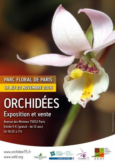Exposition de Vincennes (94) novembre 2016 418762135769088864662381483958662438706231945099o
