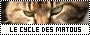 LA GUERRE DES CLANS • le début de la fin 420416cyclematou