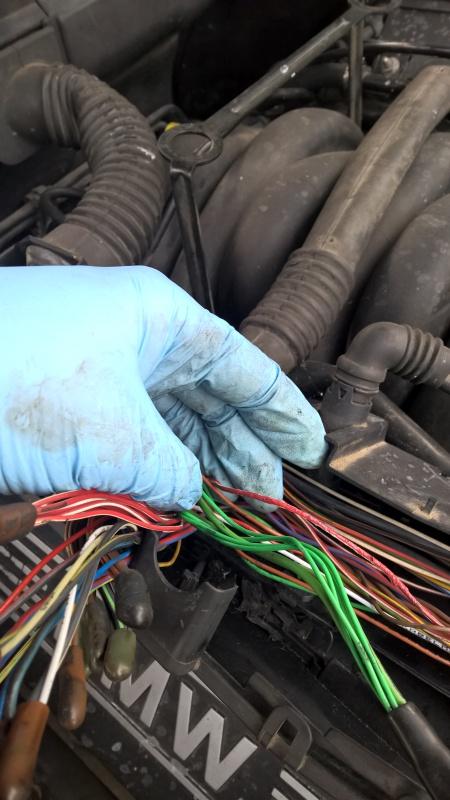 [ BMW E39 535i V8 M62 an 1997 ] Problème sur le circuit de refroidissement (résolu ) - Page 2 422511WP20160727202623Pro