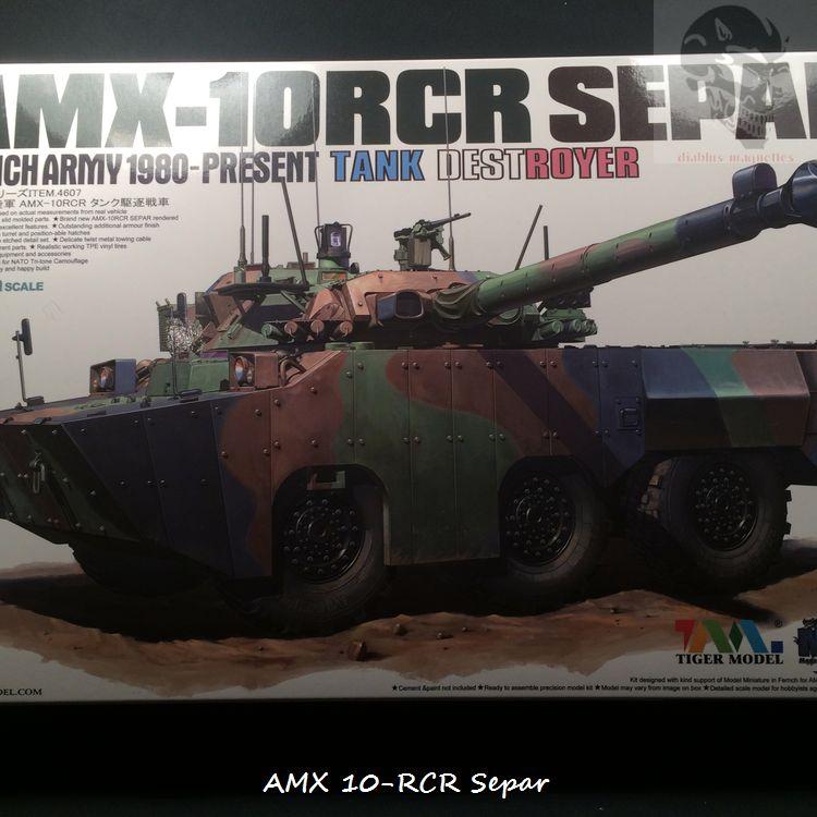 AMX 10 RCR SEPAR maquette Tiger Model 1/35 440081IMG3744