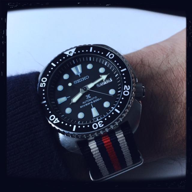 Votre montre du jour - Page 16 449748TurtleSRP77722