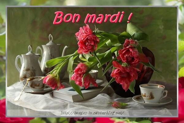 Bonne Mardi 451672d61f0897