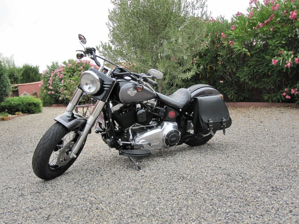 Softail Slim sous tous ses angles ! - Page 10 456892IMG1723