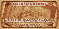 Golden Dreams: commentaires, précisions, questions,  486354GDPhotographe1bronze
