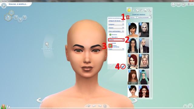 [Débutant] Supprimer facilement du jeu le contenu personnalisé dont on ne veut pas grâce à Sims 4 Tray Importer 489304Post3image1