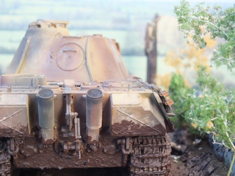Ardennes Belges ,  mi-septembre 1944... 499012DSCF7289