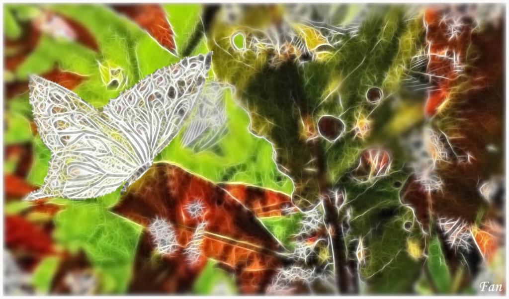 Fabrique d' IMAGES de Vagabonde (album:2) - Page 2 503030P1080374quarerfiltered02fractaliusbis