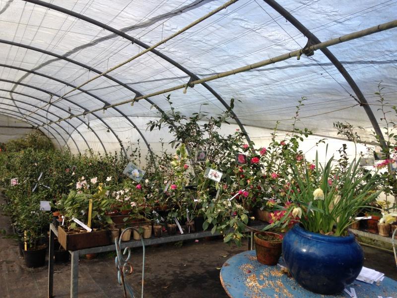 (40) Plantarium et chemin de ronde - Gaujacq 515154IMG0538