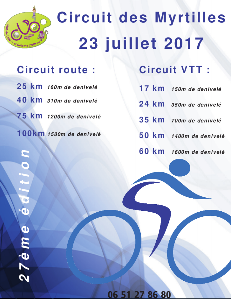 Les myrtilles - Vosges - 23 juillet 2017 525696myrtilles