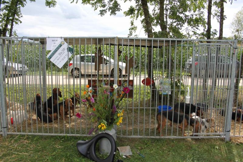 Fête de la ruralité le 23 août à St Usuge (71) 530858IMG5828