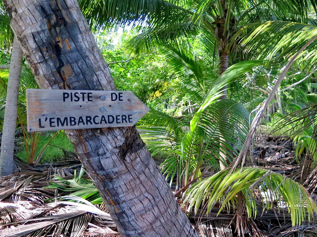 [Campagne] Iles éparses du canal du Mozambique - Page 15 535437glorieusesfin16