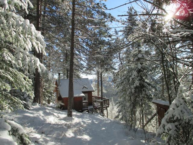 l'hiver est bien installé 541087IMG0308