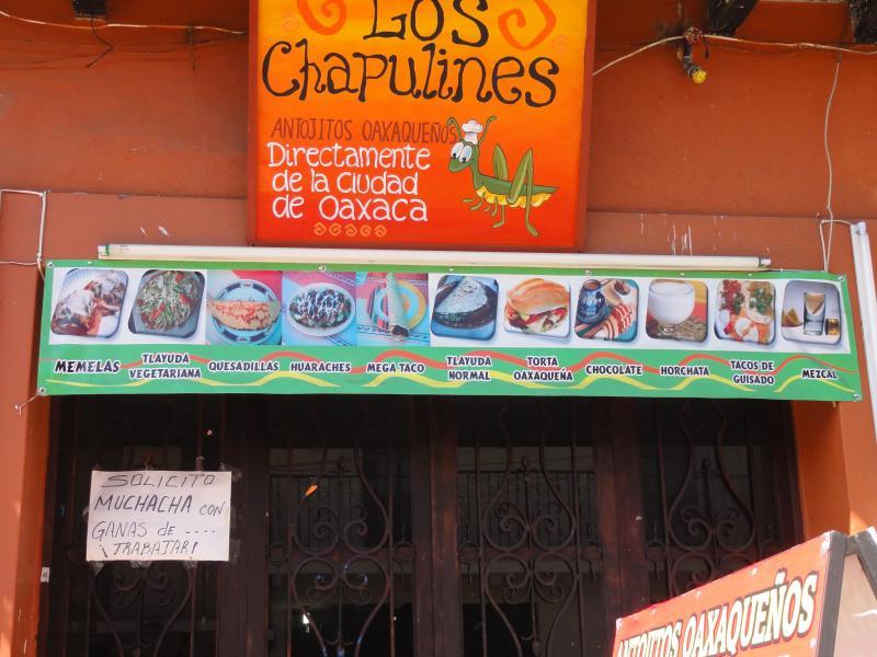 Graffitis, affiches, pub, peintures, sculptures, art - Page 3 544869DSC00772