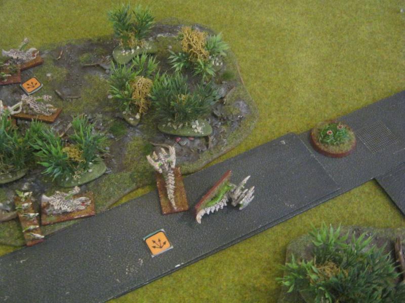 Assaut sur Zebra (campagne narrative) 554541IMG0031