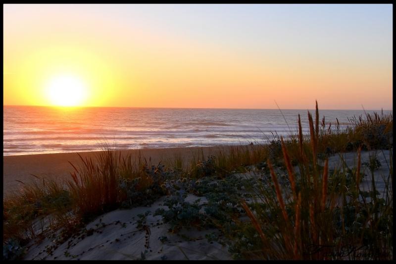 Coucher de Soleil océan Cap Ferret 57314343261