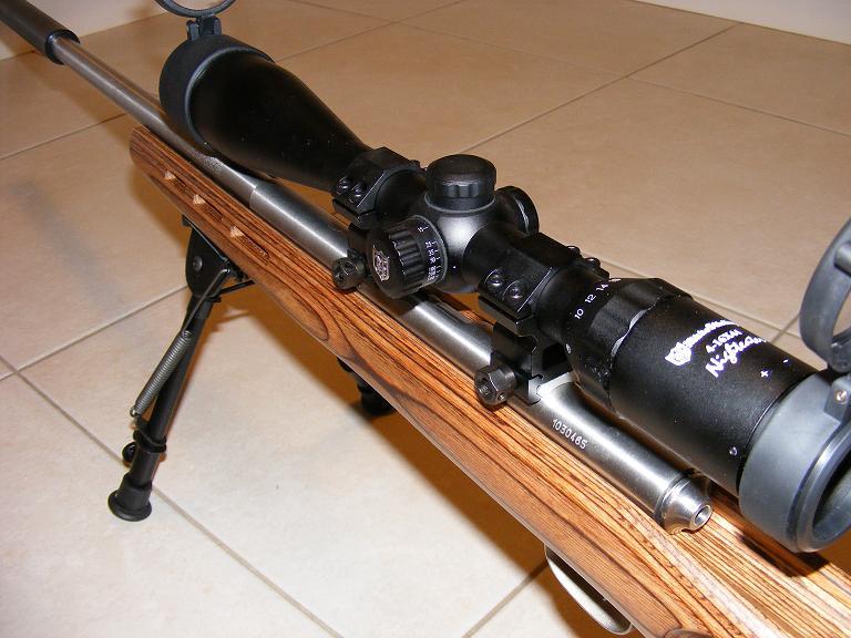 Mes armes longues : Savage Mark II BTVS  et  Custom Silence MK2 + cartons 574319DSCF0589