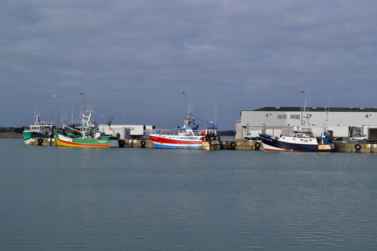 [VIE DES PORTS] Quelques bateaux de pêche (sur nos côtes Françaises) - Page 21 575393DSC15061