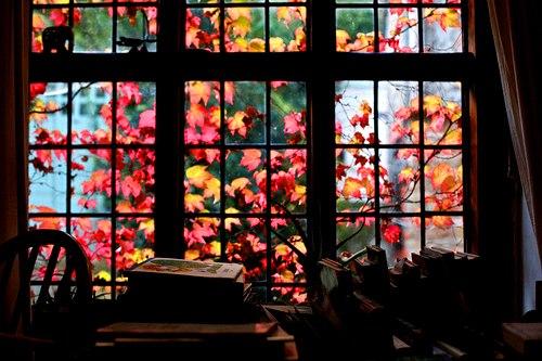 Des fenêtres d'hier et d'aujourd'hui. - Page 4 57598436575440571459334058177428902n