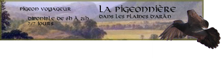 Le Phénix Enchaîné #5 583097pigeon