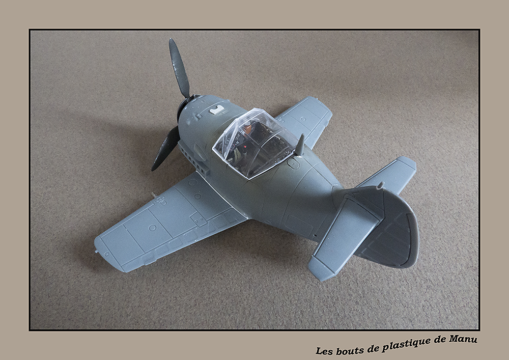 Bf 109 Tiger Model egg plane-FINI ! 5921466828