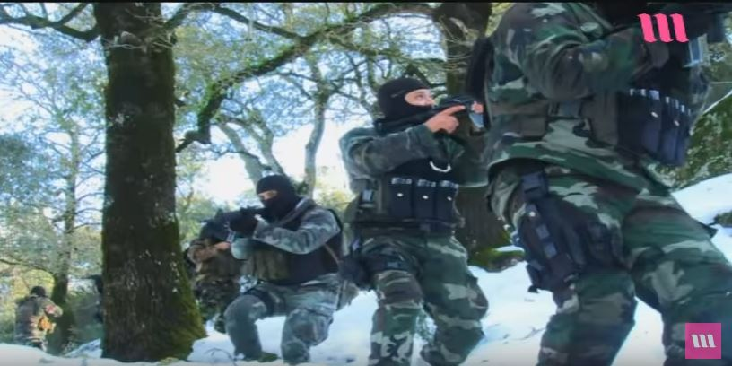 القوات الخاصة التونسية (حصري وشامل) - صفحة 37 621460451