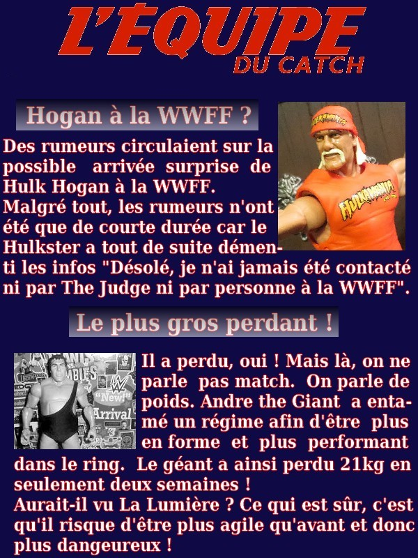 WWFF MAG - Page 3 631283mag013