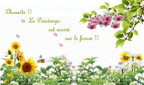 Suite de Bannières AMIS 643909ilogo