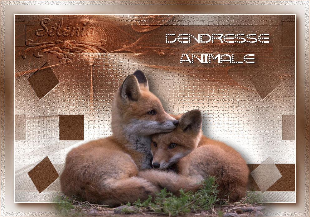 Tendresse Animale (PSP) 650276tendresseanimale