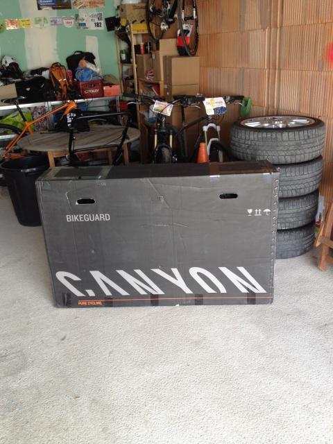 CANYON TORQUE FRX 679492CANYONTORQUE1