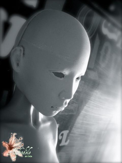 Heiyu: photos P9 [25 octobre] - Page 5 681338SANY0040A