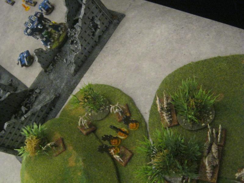 Assaut sur Zebra (campagne narrative) 683368sophia261