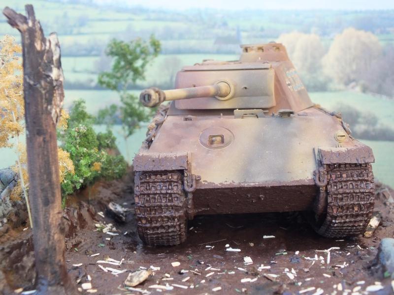 Ardennes Belges ,  mi-septembre 1944... 696747DSCF7290