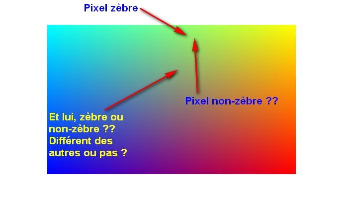 HQS - Le pseudo qui fâche 721897002