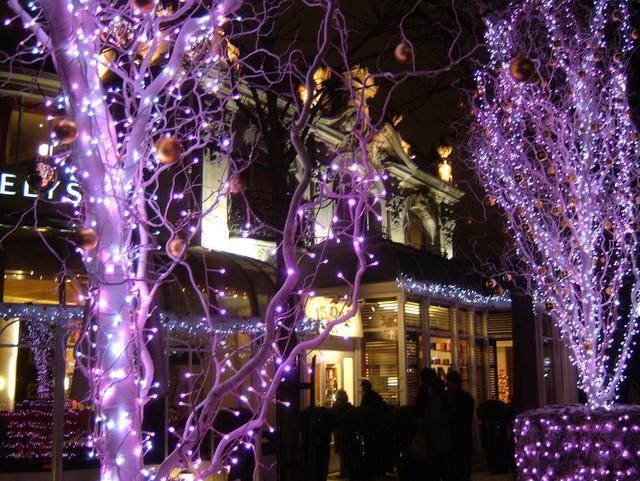 ELIANE A PHOTOGRAPHIE PARIS EN HABIT DE LUMIERE 724486pavillon_elysee_le_notre