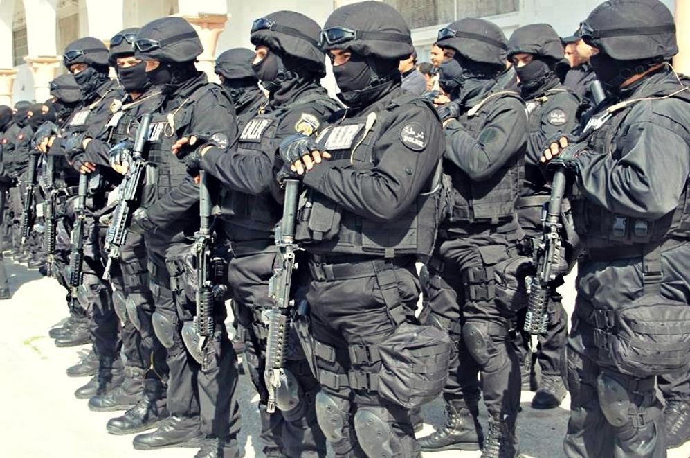 Armée Tunisienne / Tunisian Armed Forces / القوات المسلحة التونسية - Page 6 7484391274589910450523755600666475929906098859652n