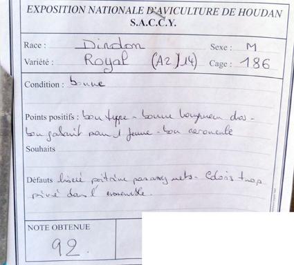 exposition d'aviculture Foire ST MATTHIEU 27 et 28 Septembre 2014 - Page 3 761002P1150888