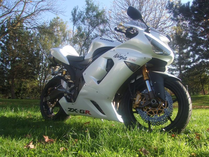 Mon zx6r blanc/blanc nacré 763844DSCF3855
