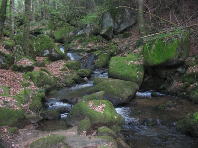 Ruisseau du Mayroux 766469IMG_5084