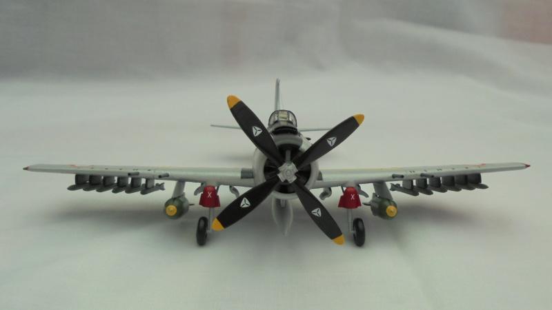 DOUGLAS A1 SKYRAIDER Armée de l'air 767431DSC04577
