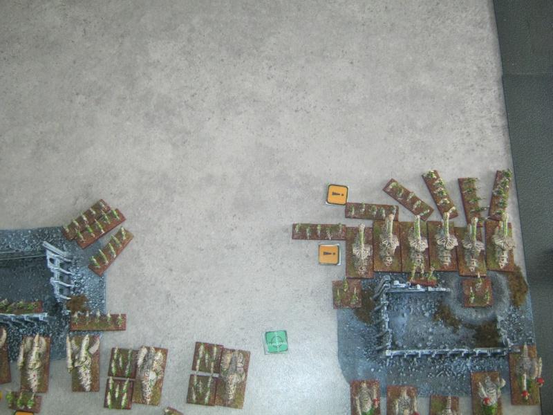 Assaut sur Zebra (campagne narrative) 775919sophia222